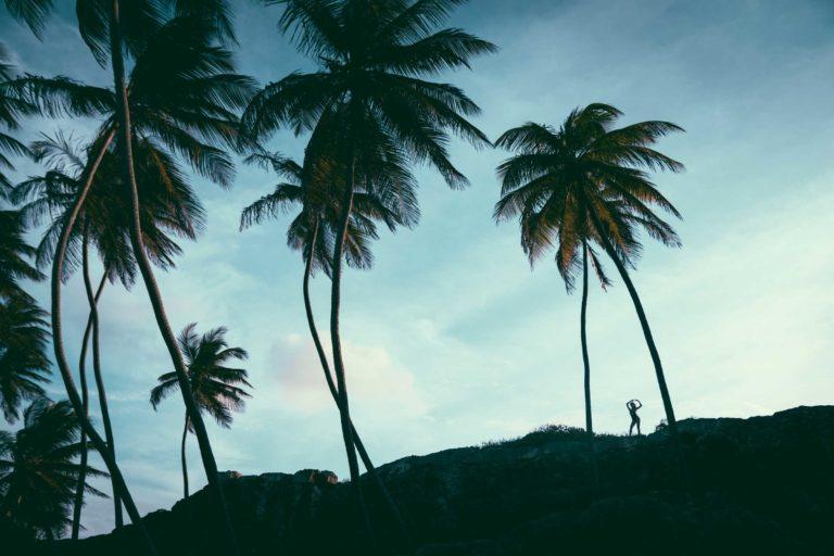 Sundek Barbados